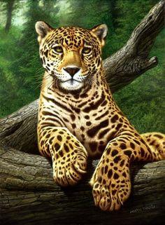 """Amador Tanoira, """"Jaguar"""" óleo sobre tela, 80 x 60 cm."""