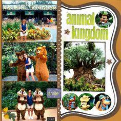 Layout: Animal Kingdom