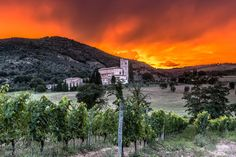 A killing sunset, Abbey of Sant'Antimo, Tuscany