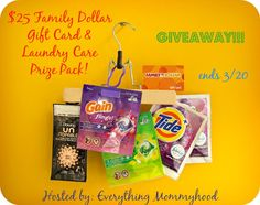 $25 Family Dollar Gift Card & Laundry Care Prize Pack Giveaway - ends 3/20