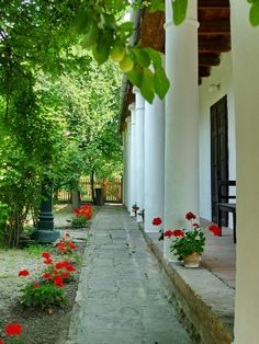 Yard of Hungary East Of Eden, Heart Of Europe, European House, Cottage Homes, Budapest, Traditional House, Country Life, Terrace, Beautiful Places