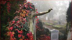 Angel in the graveyard by Vlastimil MoDDO Vanek on 500px