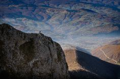 #Top24h: U potrazi, Autor: Siniša Skenderija #foto #fotografija #photo #photography