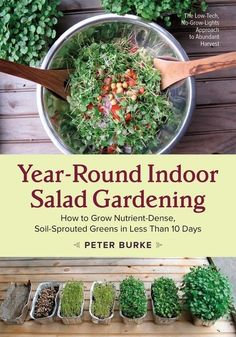 Year-Round Indoor Salad Gardening and How To Build the Shelf.