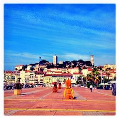 The harbor in Cannes, France, in the back you can spot parts of the Old Town too.