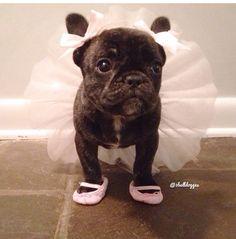 On m'a dit que je pouvais être ce que je voulais, je suis une ballerine !! Mdr !!