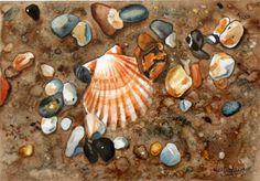 Coquillages et galets - Aquarelle de Nicole L. Cookies, Desserts, Animals, Sea Shells, Pebble Stone, Water Colors, Crack Crackers, Tailgate Desserts, Deserts