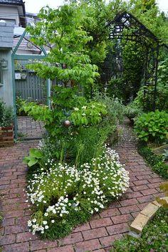Tropical Garden, Garden Projects, Garden Design, Planting Flowers, Garden Paths, Urban Garden, City Garden, Backyard Plan, Pretty Gardens