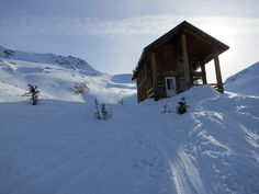 asulkan cabin  glacier park lodge bc - Google Search