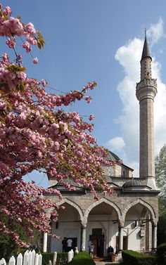 Ali Pasha's Mosque, Sarajevo, Bosnia and Herzegovina. Ali Pasha's Mosque was constructed in Sarajevo during 1560-61 as a vakuf (legacy or perpetual endowment) of Hadim Ali-pasha, the former Ottoman governor of the Budapest administrative district. (V)