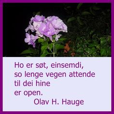 Olav H Hauge sitat World Of Books, Life Is Beautiful, Wisdom, Quotes, Quotations, Its A Wonderful Life, Qoutes, Quote, A Quotes