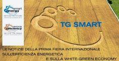 Scoprite tutti i contributi video di questi tre giorni di #Smartenergy su TG Smart
