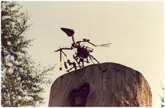 Een vogeltje in het Middelheim