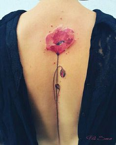 Yes, minus the red dots around the poppy.
