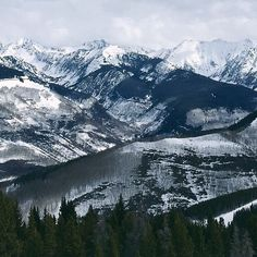 Colorado Rockies never disappoint