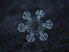 snowflackes by Aleksiej Kliatow 478614857753953436386996.jpeg