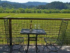 Spring Vineyard Sonoma County
