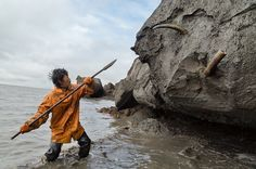 See a photo of a mammoth tusk hunter in Siberia by Evgenia Arbugaeva, from National Geographic. Dinosaur Fossils, National Geographic Photos, Cool Photos, Remote, Journey, Hunters, Archaeology, Places, Treehouse Kids