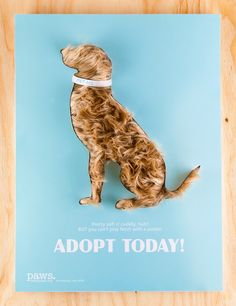Interactive Poster Design: Paws adoption campaign. Student project.