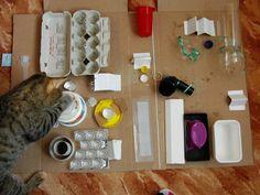 CHEAP CAT STUFF - Make a kitty play board
