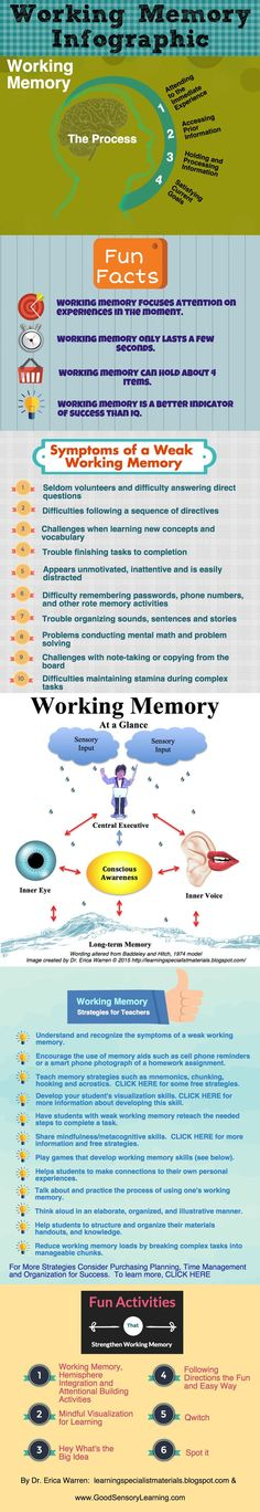 Working Memory - the process, definition, fun facts, strategies, activities and more.