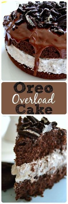 Oreo Overload Cake is for serious Oreo cookie lovers! Desserts, Oreo Overload Cake is for serious Oreo cookie lovers! Brownie Desserts, Mini Desserts, Just Desserts, Delicious Desserts, Yummy Food, Cheesecake Desserts, Raspberry Cheesecake, Plated Desserts, Baking Recipes