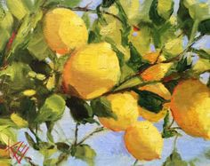 Krista Eaton lemon tree