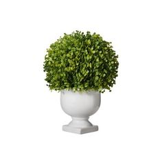 Find product information, ratings and reviews for a Threshold™ Baby Tears Topiary.