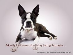 Mostly I sit around all day being fantastic.