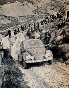 Vw rally bug
