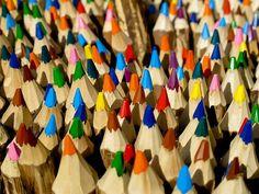 Pencils branches