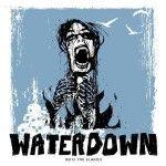 """Albumcheck   """"Into The Flames"""": Abschied von Waterdown. Eine Art Feuerbestattung."""