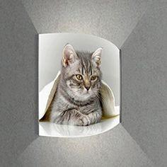 Luminoase-Leuchten - Leuchte Katze unter Decke - Nachleuchtende hochwertige LED Acrylglas Wandbildlampe, Motiv Tier (370 x 400 mm)
