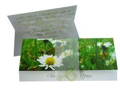 Hochzeitseinladungen+-+Sags+durch+die+Blume Romantic Wedding Invitations, Card Wedding, Invitation Cards, Wedding Bride, Plants, Gifts