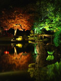 Beautiful Japanese garden at night. This nice lighting provides a very dramatic scene at night.