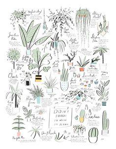... Y UN POCO DE DISEÑO: Para saber cuándo regar nuestras plantas