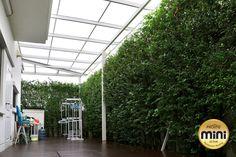 หมดปัญหา ผ้าไม่แห้ง มีกลิ่นอับ พื้นที่สกปรก ด้วยกันสาดหลังคาโปร่ง หลังบ้านมักจะใช้ซักล้างหรือตากผ้า หากใช้หลังคาโปร่งแสงจะสามารถใช้ประโยชน์จากแสงแดดอีกมาก
