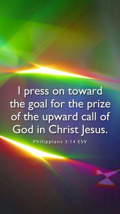 Reward for eternity
