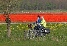 #Hoorn #e-bikes #elektrische #fietsen