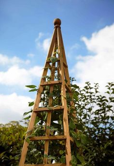 Large Wooden Garden Obelisk 1.9m 6ft - Natural Wood Climbing Plant Support