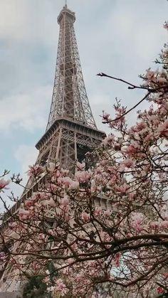Spring is around the corner💕 Eiffel Tower Photography, Paris Photography, Nature Photography, Travel Photography, Torre Eiffel Paris, Paris Eiffel Tower, Paris Wallpaper, Beach Wallpaper, Paris By Night