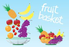 Fruit Basket — Vector illustration of a colorful fruit basket. The front and rear of basket are on layers above and below the fruit layer. Have fun! .:. My-Free-Vector-Art.com .:.