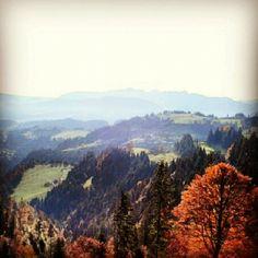#swiss #switzerland #swissmountains #suisse #suizzera #suiza #bern #igersbern #igerssuisse #instanaturelover #instanature #igersnature #emmental #napf #herbst #autunm #trees #autunmcolors #colors - @nigy84