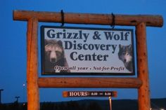 Grizzly and Wolf Discovery Center - West Yellowstone