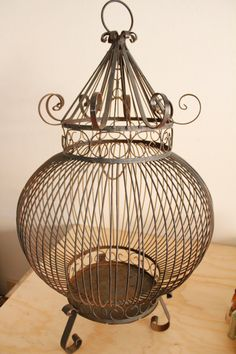 There is something about antique bird cages that I love. Antique Bird Cages, Antique Metal, The Caged Bird Sings, Bird Boxes, Pet Cage, Bird Pictures, French Decor, Glass Birds, Beautiful Birds