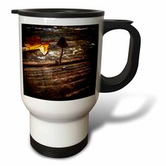 #coffee #mug #drivesafe #commuter #travel #cup #drink #gifts #art #beverage #hotAmazon.com: DYLAN SEIBOLD - PHOTOGRAPHY - MUSHROOM - 14oz Stainless Steel Travel Mug (tm_244475_1): Kitchen & Dining