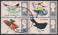 Estampilla Gran Bretaña, 1966 - Gaviota Cabecinegra, Alionín, Petirrojo y Mirlo