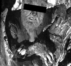 Lon Chaney Jr - The Wolfman - The film stars Lon Chaney, Jr. as The Wolf… Monsters Inc, Universal Monsters, Horror Monsters, Scary Monsters, Famous Monsters, Retro Horror, Horror Icons, Vintage Horror, Horror Films