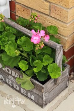 Una idea maravillosa para el jardín o terraza