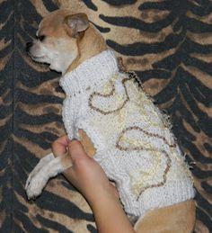 Abby Toutous: Pull blanc et doré Corgi, Animals, Chihuahua Clothes, Small Dogs, Petite Clothes, Doggies, Corgis, Animales, Animaux